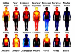 Emotions au scanner